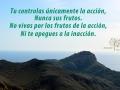 maraccionyfrutos-syp