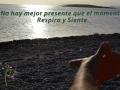 playa-meditando-syp-presente