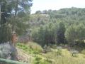 retiro-paisaje4