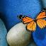 mariposa-y-piedras-gordas-10294si